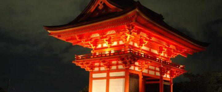 昼の涅槃図 夜のライトアップ