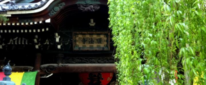 「戦国大名 伊達政宗の書状」が「六角堂」にて初公開!