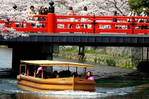 「岡崎疏水・桜回廊ライトアップ」&「十石舟夜桜運航」の開始