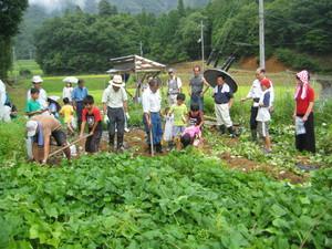 家族で楽しむ農業体験ツアー