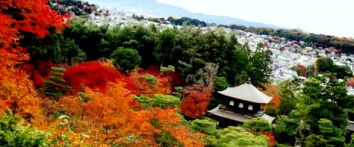銀閣寺 秋の特別拝観