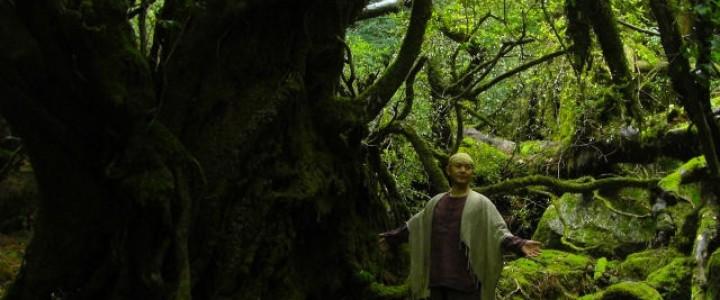 音絵師in京都・町家カフェ「月の花」