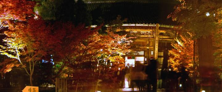 総本山永観堂禅林寺ライトアップ
