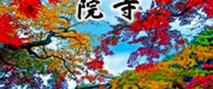 秋の特別拝観/高台寺・圓徳院