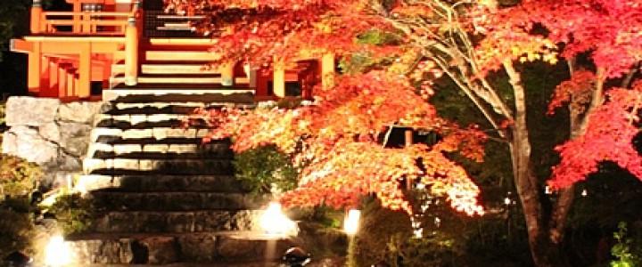醍醐寺 秋期夜間拝観ライトアップで読経を聞く