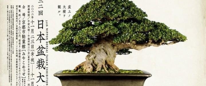 第32回日本盆栽大観展 | 盆栽BONSA