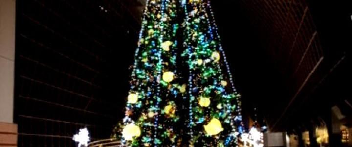 高さ22mのツリーが光る京都駅ビルクリスマス2012