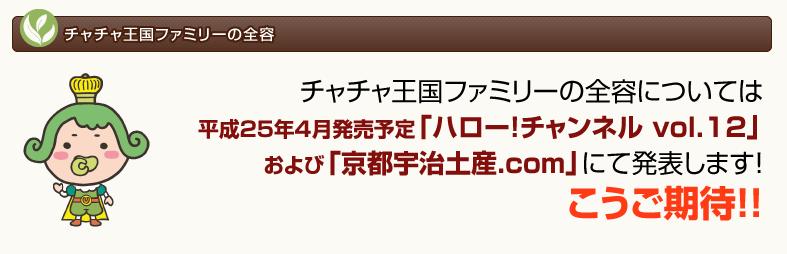 スクリーンショット 2013-01-03 13.23.24