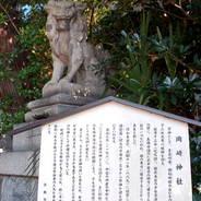 初詣 狛兎 狛犬 岡崎神社