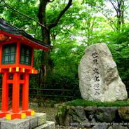 初詣 世界文化遺産 石碑 下鴨神社