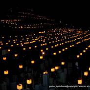 万灯会 東大谷万灯会  東大谷墓地