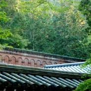 紅葉  南禅寺