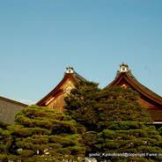京都御所秋季一般公開    京都御所 小御所 清涼殿