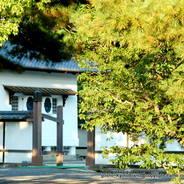京都御所秋季一般公開    京都御所
