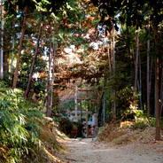 初詣 狛犬 狛龍 パワースポット  伏見稲荷大社 伏見神宝神社