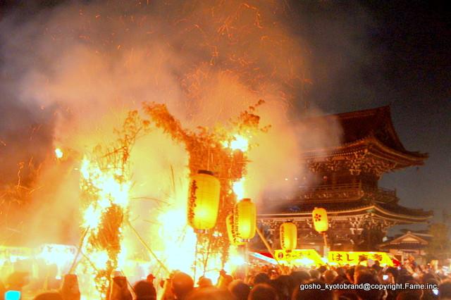 """涅槃会の宵に京都三大火祭""""お松明式"""" /嵯峨釈迦堂"""