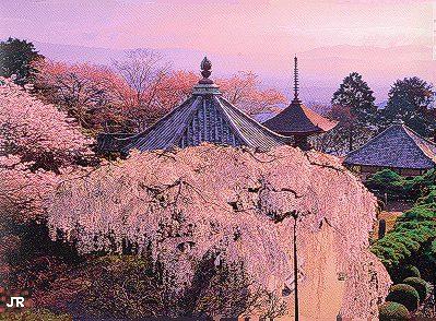 1999/春、JR東海 「そうだ、京都行こう」のキャンペーンポスターより部分