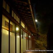 観月茶会 妙心寺 退蔵院 千山和尚