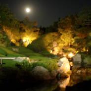観月茶会 中秋の名月 妙心寺 退蔵院 花園天皇 無因宗因 中根金作