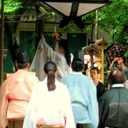 あじさい  藤森神社