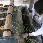 早速引き抜いた茅で厄除の茅の輪を作る参拝者