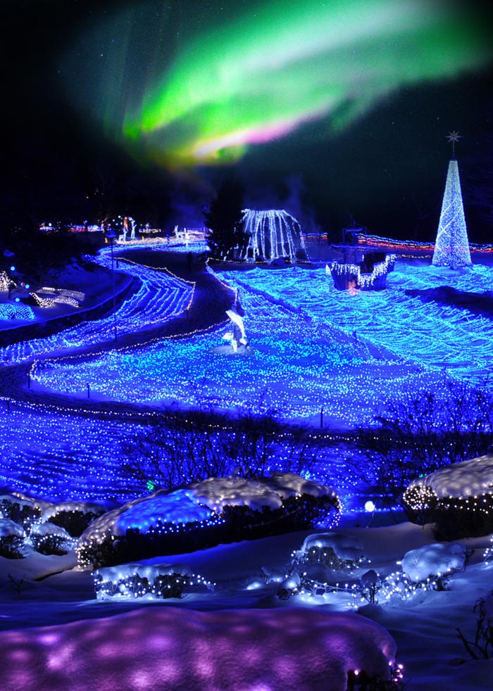 西日本初・京都最大!イルミネーションと雪、オーロラのコラボ
