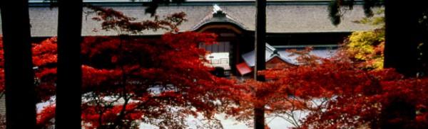 enryakuji_konponntyudo_autumn
