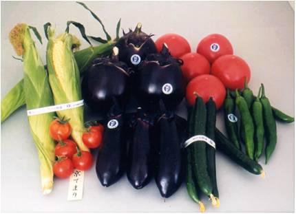 駅ナカ、街角に市内の農家が作った,新鮮な京野菜・旬野菜がいっぱい