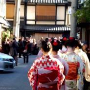 芸舞妓 祇園