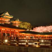 花見 夜桜 ライトアップ 紅しだれコンサート 平安神宮 桓武天皇 孝明天皇