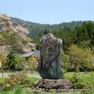 花見 観桜 石碑 常照皇寺