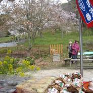 桜 花見 筍ずし 地蔵禅院