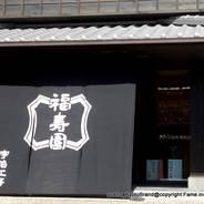桜 花見 観桜 宇治川さくらまつり 宇治観光 福寿園