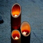 蛍狩り 蛍火の茶会  下鴨神社