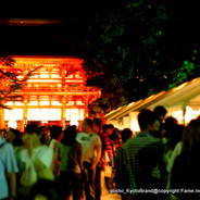 蛍狩り 蛍火の茶会 世界遺産 糺の森納涼市