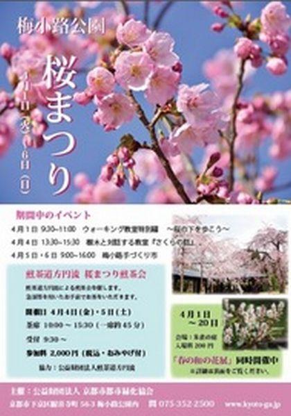 桜まつり-thumb-190xauto-2916