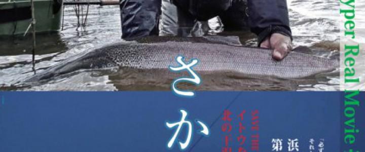 Poster_sakanakamiA2