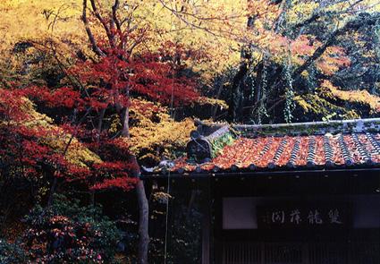 05121001_chourakiji