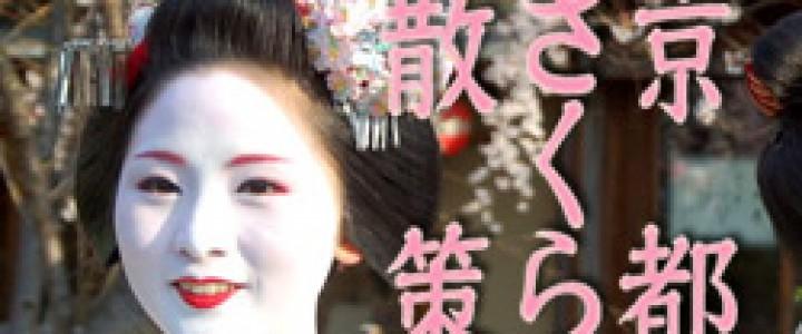 banner-sakura