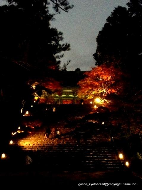 高雄もみじのライトアップ&神護寺・金堂夜間特別拝観