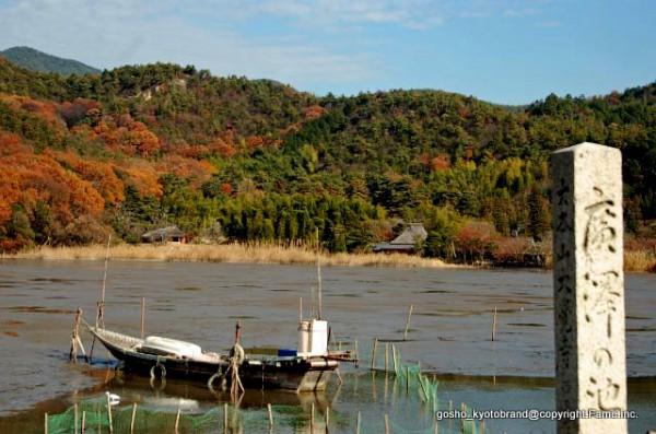 師走京都の風物詩「広沢池の鯉揚げ」