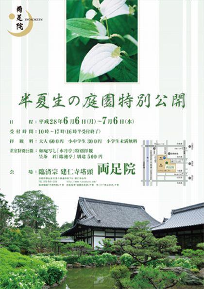 初夏の特別拝観★半夏生(はんげしょう)の庭園特別公開