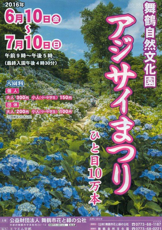 ひと目10万本☆アジサイまつり/舞鶴自然文化園