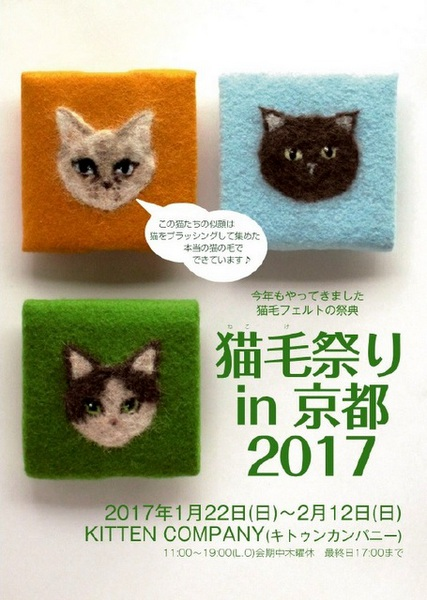 「猫毛祭りin京都 2017」