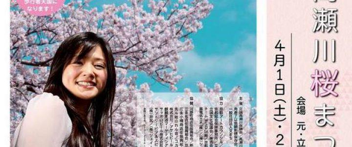 第31回高瀬川桜まつり ☆元立誠小学校