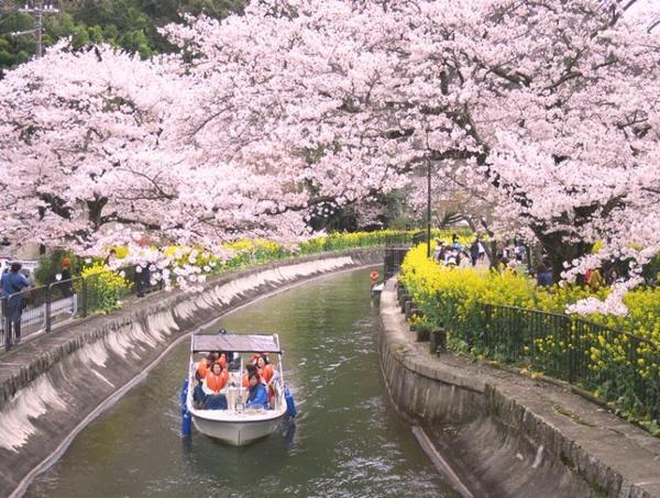 琵琶湖疏水通船復活
