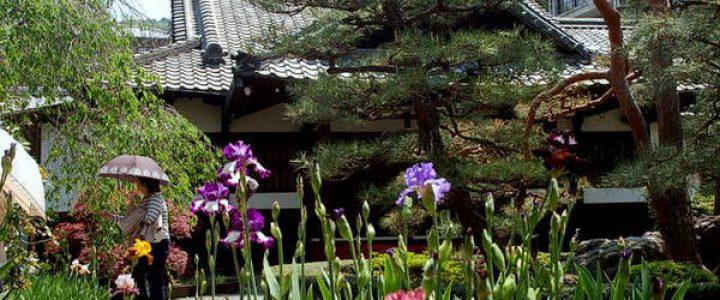 一初と真闇のお戒壇巡り/春の特別公開 得浄明院