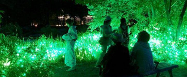 京都・梅小路七夕あそび2017~夜の公園で憩う~ 京の七夕