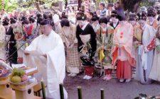 櫛祭☆彡安井金比羅宮