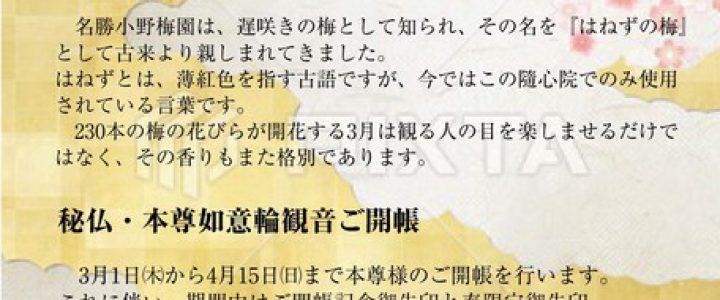 観梅会★名勝小野梅園